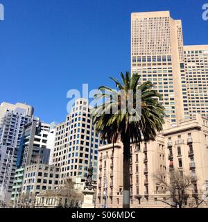 Melbourne city skyline with Palm tree on sunny day