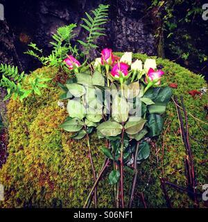 Memorial to accidental death, Little Qualicum Falls Provincial Park, Vancouver Island, Canada - Stock Photo
