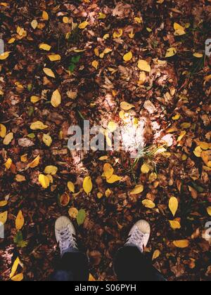 A man's feet standing in fall leaves at the start of autumn. - Stock Photo
