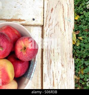 Fresh bowl of gala apples - Stock Photo