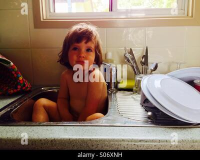Bath time in the kitchen sink - Stock Photo