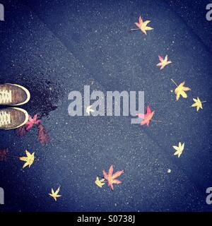 Looking down in autumn - Stock Photo