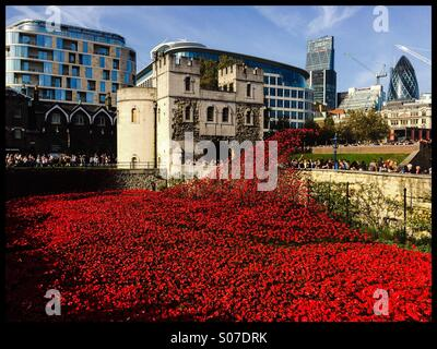 A general view of the Blood Swept Lands And Seas Of Red ceramic poppy installation at the Tower Of London in remembrance - Stock Photo