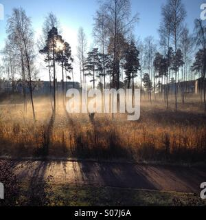 Sunrise and morning mist over an industrial park in autumn on the island of Åland in the Finland Baltic Archipelago - Stock Photo