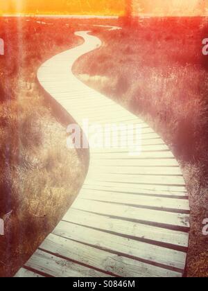 Wooden walkway - Stock Photo
