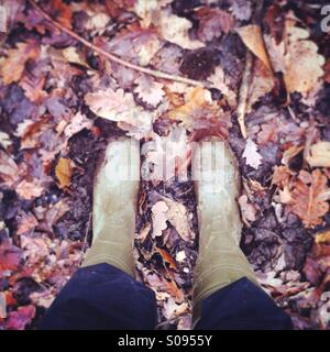 Looking down at feet wearing wellies in fallen leaves and mud on a woodland walk in Essex, UK - Stock Photo