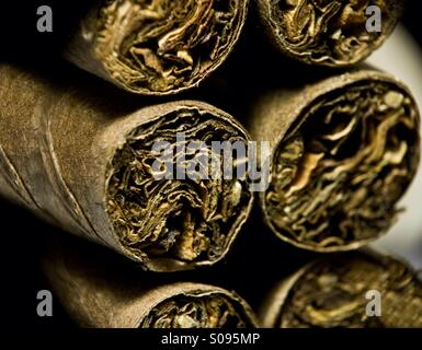 Dry brown cigars - Stock Photo