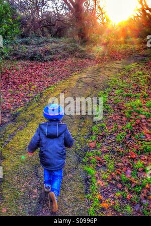 A little boy runs into the woods. - Stock Photo