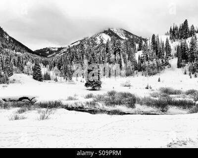 A snow-covered meadow in big Cottonwood Canyon coming Utah is covered by stormy clouds. - Stock Photo