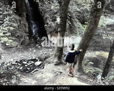A six year old boy looks at a waterfall on Bean Creek. Santa Cruz County, California, USA - Stock Photo