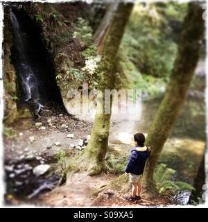 A six year old boy looks at a waterfall on Bean Creek. Santa Cruz County, California, USA Stock Photo