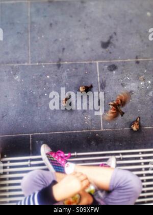 Little girl feeding the birds. - Stock Photo