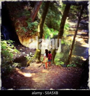 A ten year old girl and her six year old brother look at a waterfall on Bean Creek. Santa Cruz County, California, - Stock Photo