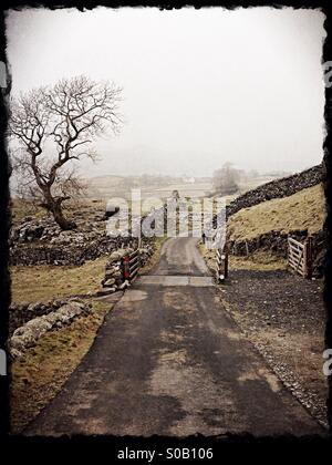 Country lane in Yorkshire Dales near Settle,North Yorkshire, Northern England - Stock Photo