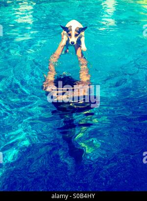 Water play; teenage boy playing in the swimming pool with his dog. - Stock Photo