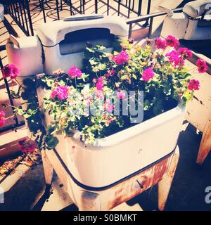 Antique washing machine with flowers growing inside - Stock Photo