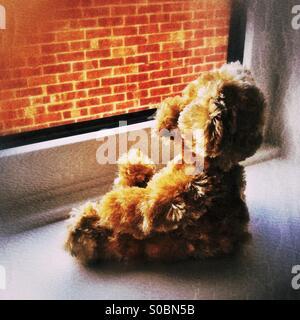 Teddy bear sat on window sill facing brick wall - Stock Photo