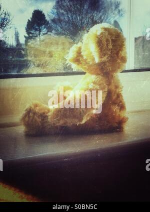 Teddy bear looking out of window - Stock Photo
