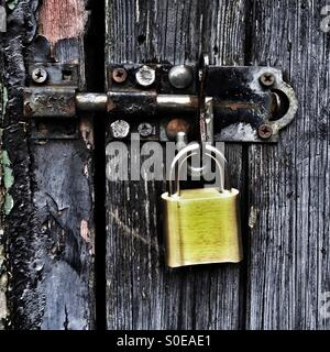New brass padlock and bolt on an old black weathered wooden door - Stock Photo