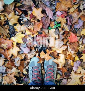 Feet with hiking shoes standing on ground with autumn leaves - Stock Photo