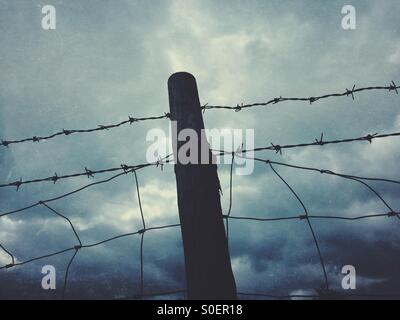 Barb wire and fence - Stock Photo