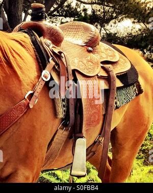 Detailed portrait of Western saddle, bridle, stirrups, and blanket on a long maned sorrel chestnut stallion. - Stock Photo