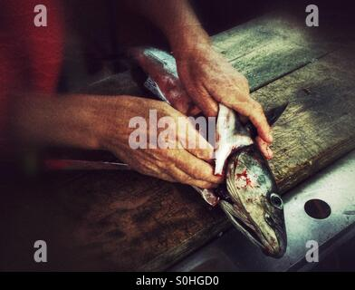 Cleaning fish - Stock Photo