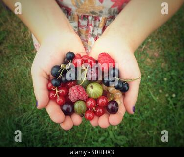 Fruits in child hands - Stock Photo