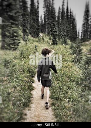 Exploring the forest along the Pacific Crest Trail in Washington, USA - Stock Photo
