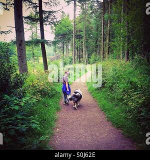 Boy and dog on woodland walk. - Stock Photo