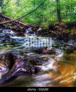 Several small waterfalls cascade over lichen covered rocks - Stock Photo