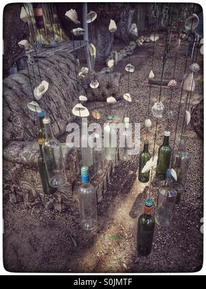 Empty bottles hanging from a tree. - Stock Photo