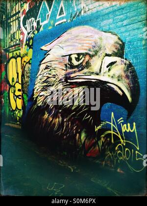 Street art of an eagle head - Stock Photo