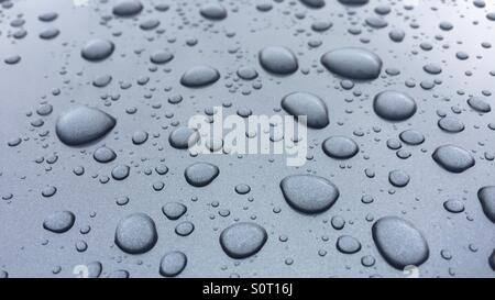 Water beading - Stock Photo