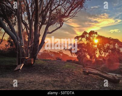 Set of swings on a tree overlooking the ocean at sunset, La Jolla, California, USA - Stock Photo