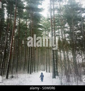little child in the woods in wintertime - Stock Photo