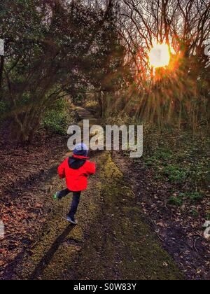 A little boy runs in the woods. - Stock Photo