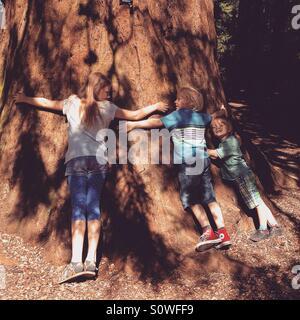 Children hugging a tree - Stock Photo
