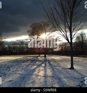 Late afternoon sun casting shadows on a snowy field - Stock Photo