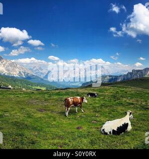 Dolomites, Italy - Stock Photo