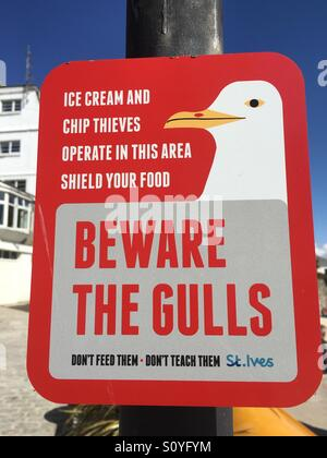 Do not feed the seagulls in St. Ives Cornwall number 3582 - Stock Photo