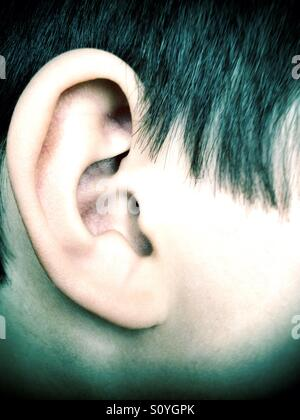 A boy's eat. - Stock Photo