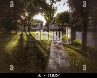 Woman walking her Yorkshire terrier in the evening, walking past community mailboxes - Stock Photo