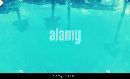 Reflections of palm trees in swimming pool. - Stock Photo