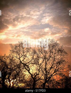 Red sky in the morning... SHINFIELD, READING - Stock Photo