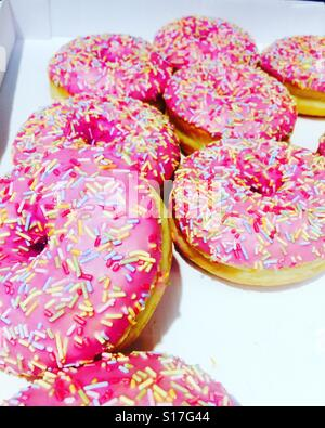 Pink donuts - Stock Photo