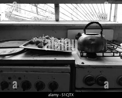 Abandoned kitchen - Stock Photo