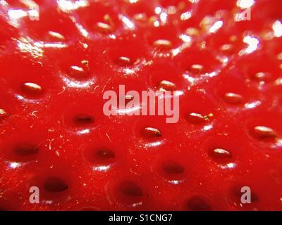 Macro of strawberry. - Stock Photo