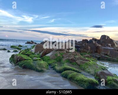 The large rocks are covered by green moss in Co Thach beach - Vietnam - Stock Photo