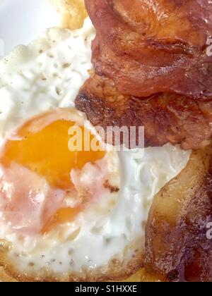 Fried egg and bacon - Stock Photo